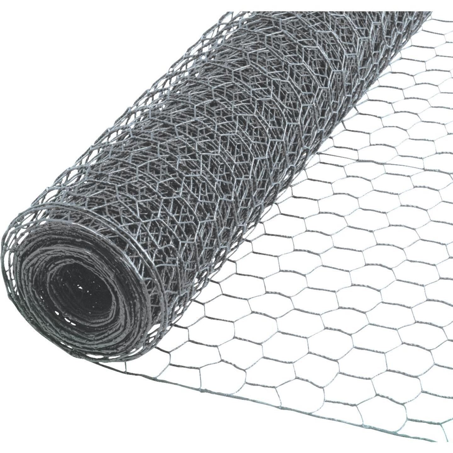 Do it 2 In. x 24 In. H. x 50 Ft. L. Hexagonal Wire Poultry Netting Image 1